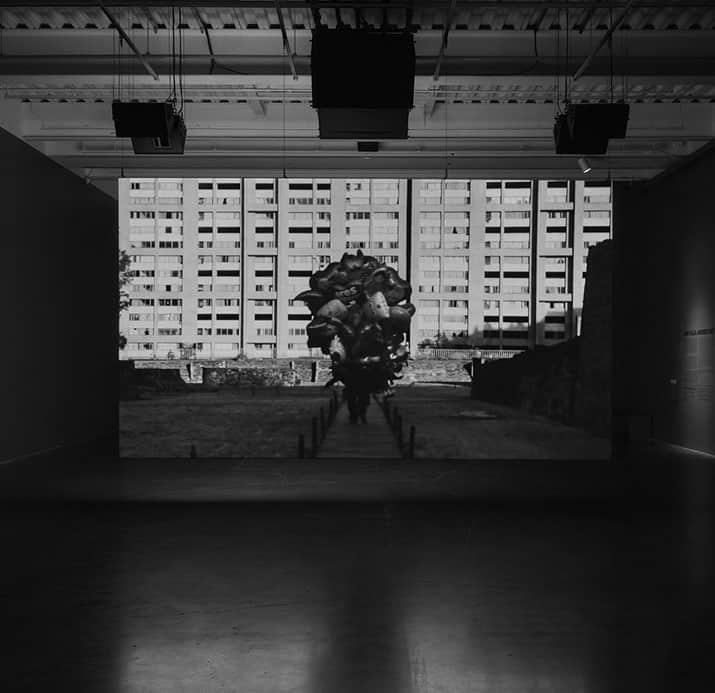anri sala museo tamayo, int3