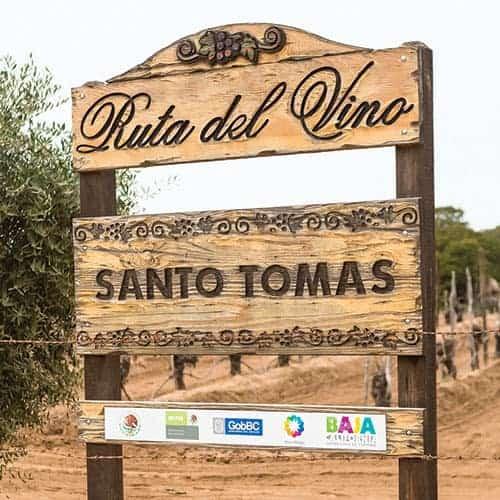 vino mexicano valle de guadalupe, santo tomas